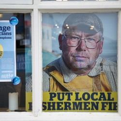 Could they save Poole fishing industry?