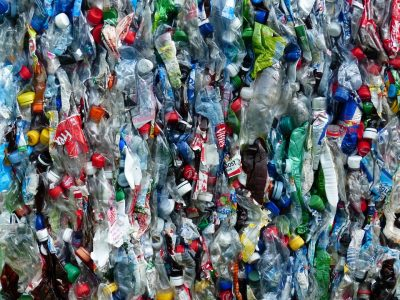 Photograph of a wall of empty plastic bottles