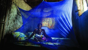Insecticide treated nets help in malaria prevention. Photo: Gates Foundation