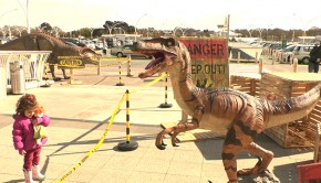 A horde of dinosaurs has taken over the Castlepoint shopping center to scare and amuse visitors.  Photo: Fadi al-Harbi