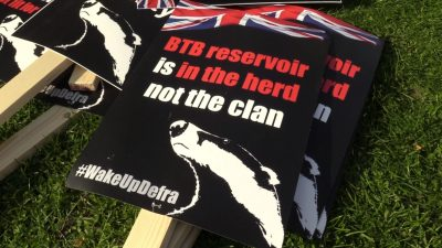 badger cull sign
