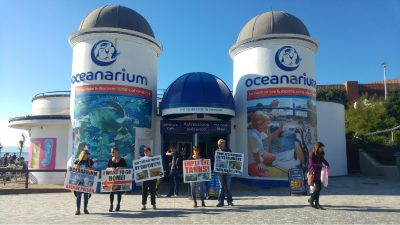 Protesters outside Oceanarium holding placards