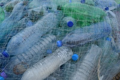 plastic bottles in fishing net