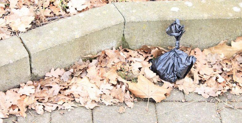 A dog poo bag