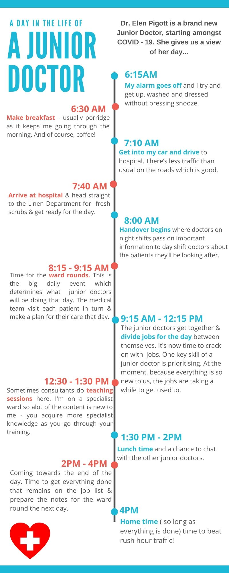 A timeline graphic of Dr.Elen Pigotts day.